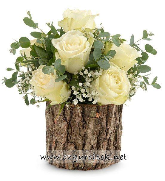 Doğal Kütükte 7 Beyaz Güller